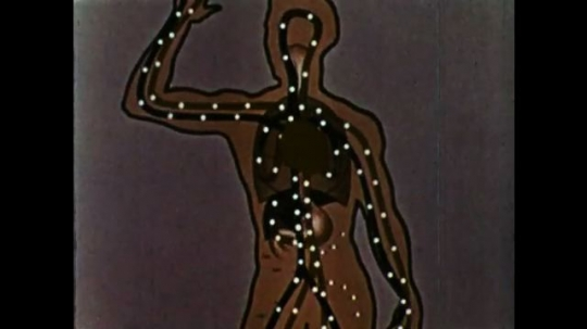 UNITED STATES 1960s: Animation of human body with circles moving through the body. Green with flow of blood.