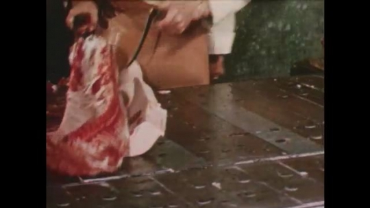 United States: 1950s: man cuts meat. Man puts stamp on meat. Men slice meat in factory. Meat packers in factory.