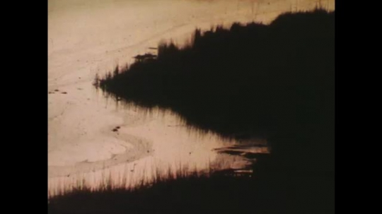 UNITED STATES: 1980s: view over wetland in evening. Sunlight reflects in water. Birds on marsh