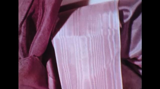 UNITED STATES: 1960s: pink and purple fabrics. Close up of branch. View across tarmac