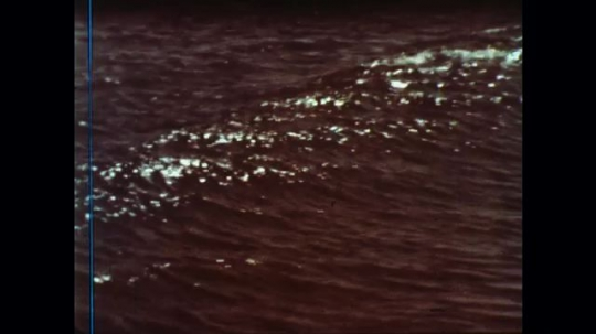 UNITED STATES: 1960s: waves on sand. Close up of shells. Close up of shell texture.