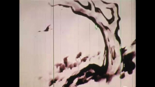 UNITED STATES: 1950s: artist paints tree in ink. Side profile of artist