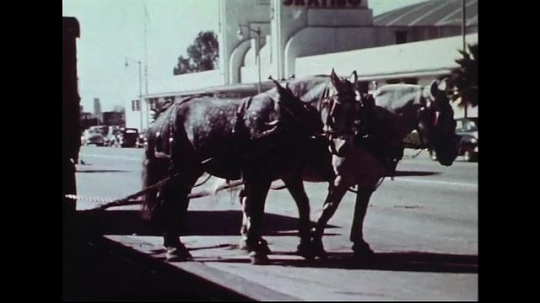 UNITED STATES 1950s : Two horses laboriously haul a heavy equipment trunk for Cole Brothers Circus through city streets.