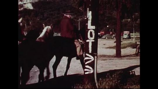 UNITED STATES 1950s : Horses are directed to a circus lot with the help of signs.