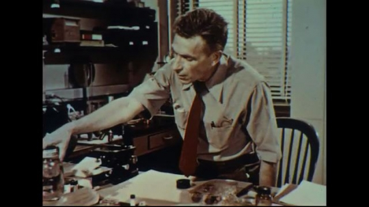 UNITED STATES 1950s: Scientist at desk, picks up jar / Close up, hand opens jar, pulls out crystal.