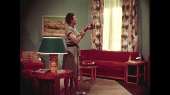 UNITED STATES 1940s: Woman sprays pesticide in home / Woman paints pesticide on door / Close up of painting.