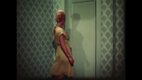 UNITED STATES 1940s: Woman walks into closet / Woman looks through clothes, pulls out skirt / Close up of moth holes in skirt.