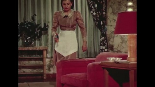 UNITED STATES 1940s: Woman walks to chair with pesticide / Hand lifts off cushion, sprays and brushes powder, puts cushion on.