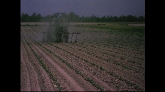UNITED STATES CIRCA 1960s-80s : A farmer drives his tractor carefully to avoid running over crops while fertilizing them as smoke forms in its path.