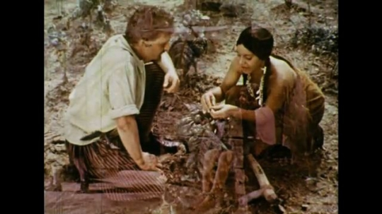 UNITED STATES 1600s: Colonial man talks to Native American woman over tobacco plants / Man with dried tobacco.