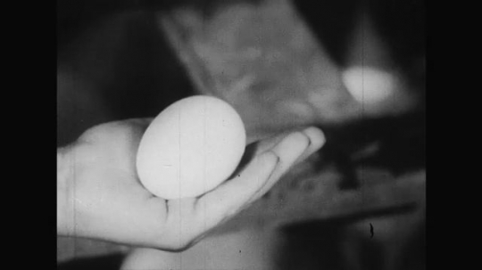 UNITED STATES 1950s: The girl helps the boy grab all the eggs that have been laid by the chicken.
