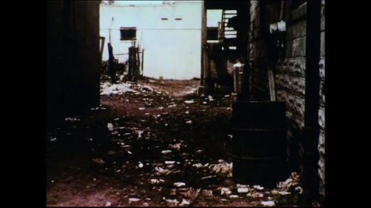 UNITED STATES 1950s: Filthy, decaying, unsanitary places and conditions where flies frequent.