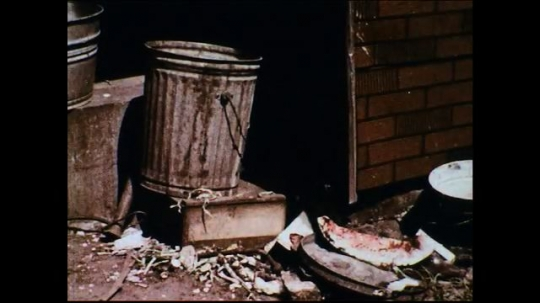 UNITED STATES 1950s: Fly larvae are discovered in a trash can.