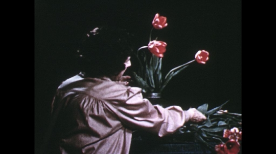 UNITED STATES: 1960s: lady puts pink tulips in vase.