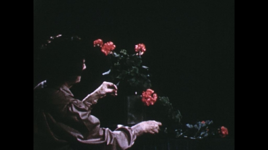 UNITED STATES: 1960s: lady picks up pink flowers for arrangement. Lady arranges flowers