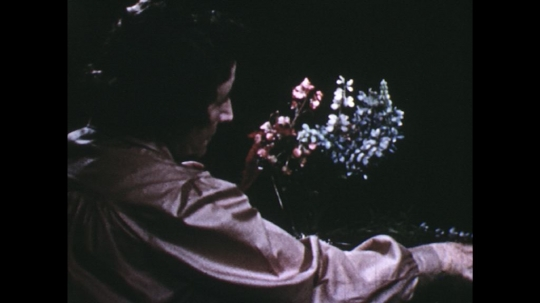 UNITED STATES: 1960s: lady fills vase with flowers. Lady cuts stem of flower with scissors