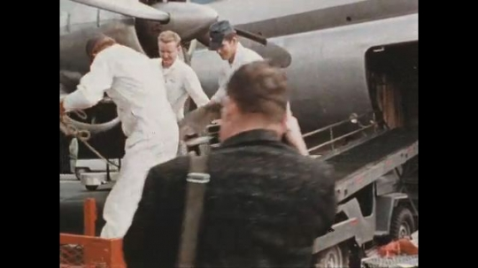 UNITED STATES 1960s: Young elephant unloaded from an airplane.