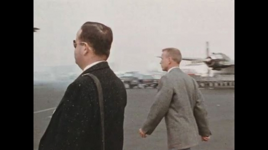 UNITED STATES 1960s: Writer and photographer arrive at airport to witness a young elephant being unloaded from a plane.