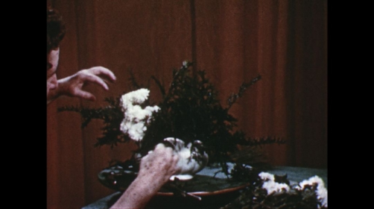 UNITED STATES: 1960s: lady puts white flowers in arrangement lady cuts flowers with secateurs. Lady turns vase