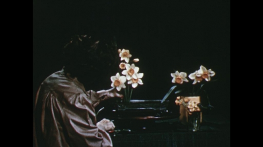 UNITED STATES: 1960s: lady inserts daffodils into arrangement. Lady adds leaves to arrangement