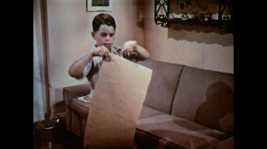 UNITED STATES: 1950s: boy puts paper over plants in fish tank.