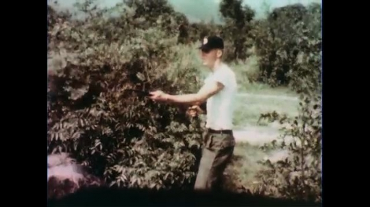 VIETNAM 1960s: Soldier fires gun / Soldiers dive off road / Soldier crawls through bushes / Soldiers march past general.