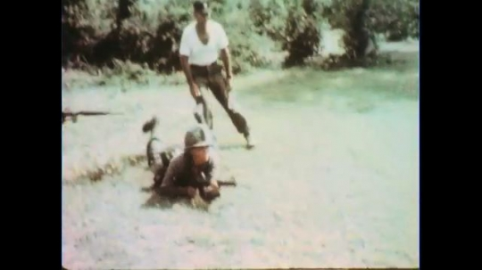 VIETNAM 1960s: Officer with soldier, soldier drops to ground / Soldiers crawl, soldier walks into bushes and fires.