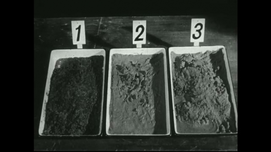 UNITED STATES: 1940s: numbered  boxes contain sand. Lead concentrate in tray. Middling in tray.