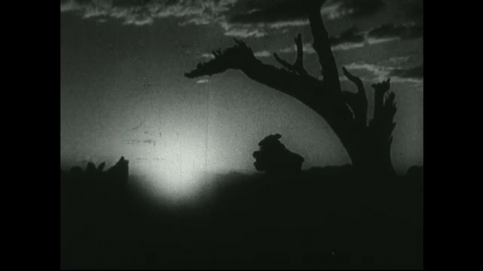 UNITED STATES: 1940s: tree in front of sunset. Dots at end of film.