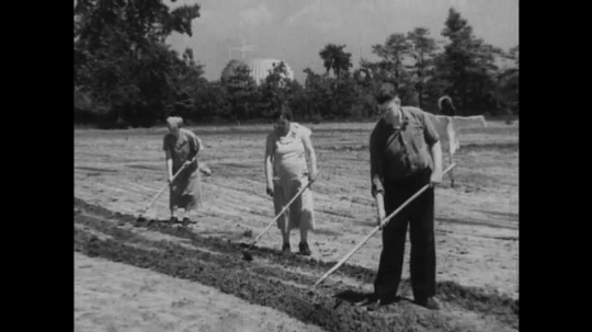 UNITED STATES 1930s-1940s : Three workers hoe a plot of soil in a field. A man pushes a soil tiller while a woman hoes behind him and a child toddles beside her. Workers labor in a lush garden.