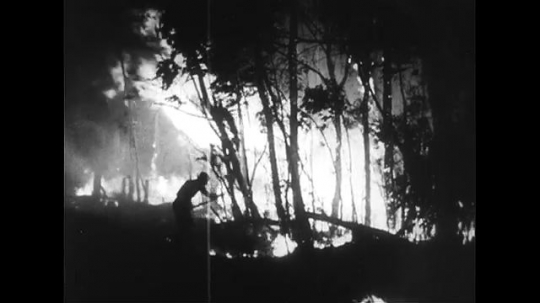 AUSTRALIA CIRCA 1951 : Volunteers in a bush fire in the Blue Mountain Region of New South Wales, Australia cannot control a fire even at night.
