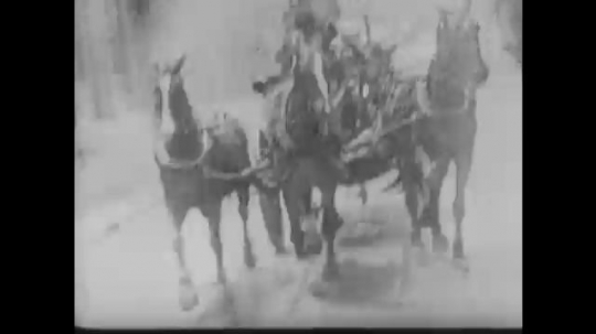 UNITED STATES 1890s: View from moving vehicle, horse-drawn fire engine / Intertitle / Women in bathing attire on beach / Intertitle.