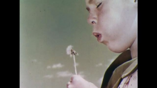 UNITED STATES, 1956: Girl blows on dandelion and boy points out a groundhog.