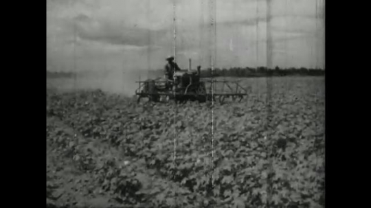 UNITED STATES, 1940s: man ploughs field with tractor