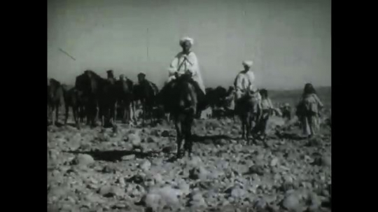 MIDDLE EAST: 1940s: Man riding a donkey and travelling with a group of nomads. Man on horse points in direction of travel. Desert environment.