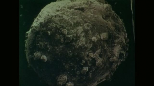 Microscopic View of Tiny Fragment Taken from Surface of the Moon. Increased Magnification of Fragment from Moon