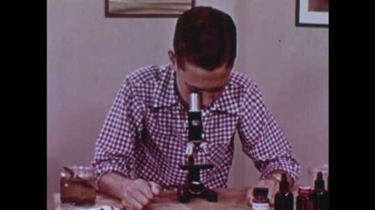 UNITED STATES: 1940s: Boy looks through microscope on his desk. Boy uses paint brush to suck up methocel from jar.