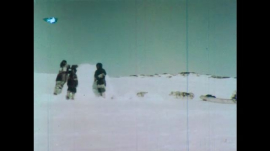 UNITED STATES 1950s: People in snow building igloo / Model plane on map, animated line appears, plane moves / View of trees.