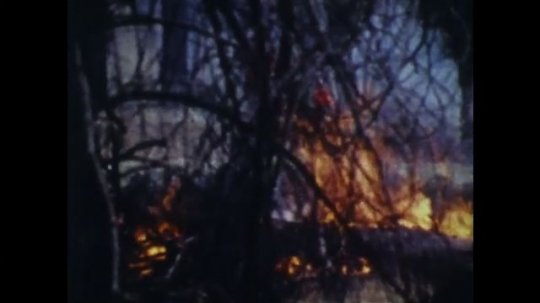 UNITED STATES: 1970s: man and boy run through forest fire.