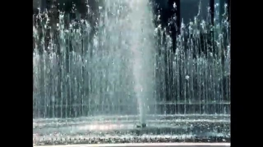 UNITED STATES, 1950s: Water fountains. Ripples on water. Plants blowing in wind next to water. Surface of a pond. Plants growing around a pond. Patterns on water in pond.