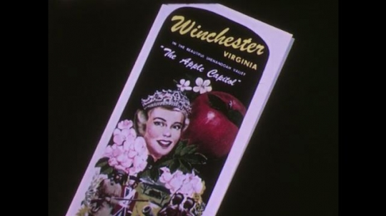 UNITED STATES 1950s: brochure of winchester, Virginia apple queen. brochures for marketing agriculture and livestock. men look at drawing on desktop. hands hold food marketing newsletter.
