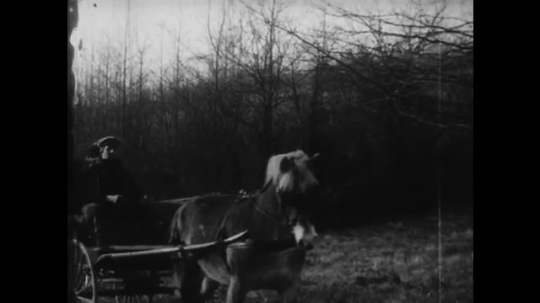 UNITED STATES: 1950s: man and woman sit on horse and cart in town. View of house from cart. Doctor leaves house.