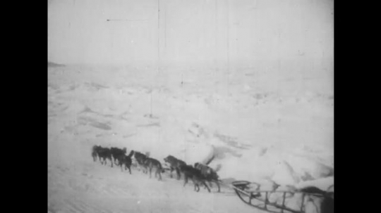 ALASKA: 1930s: huskies pull sledge across snow. Man rides sledge. Dogs run across ice.
