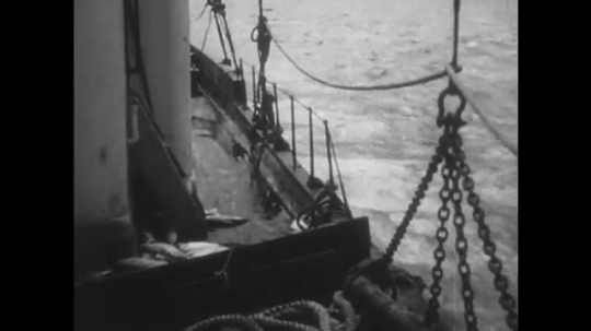 ALASKA: 1930s: view of water from moving boat. Gulls I harbour. Gulls fly around boat. Gulls fly above water