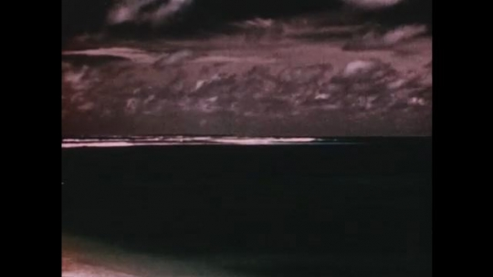PACIFIC OCEAN: 1940s: view of atoll from beach. Buildings and research park