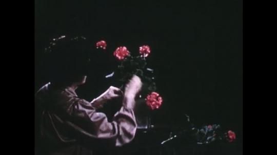 UNITED STATES: 1960s: lady picks up pink flowers for arrangement. Lady arranges flowers