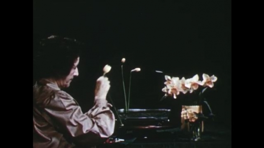 UNITED STATES: 1960s: lady inserts daffodils into arrangement.