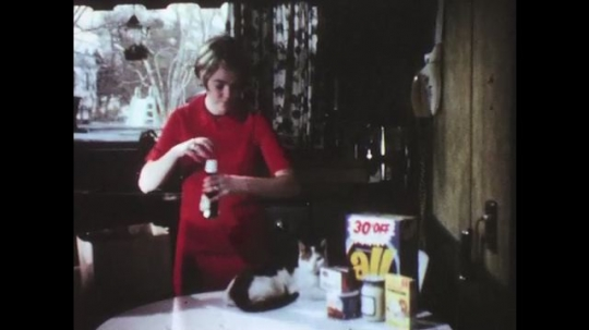UNITED STATES: 1950s: lady puts shopping on table by cat. Lady puts groceries away. Rail freight transport