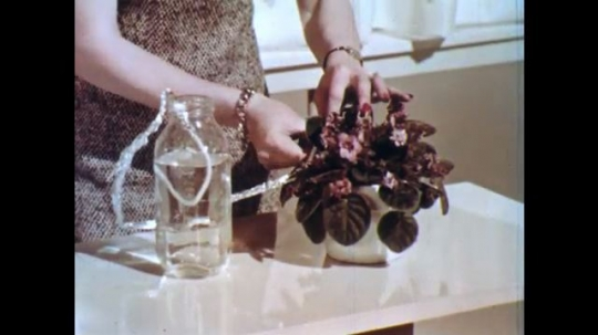 UNITED STATES: 1960s: lady talks to camera. Lady waters plant. Lady talks to statue. Flower in pot.