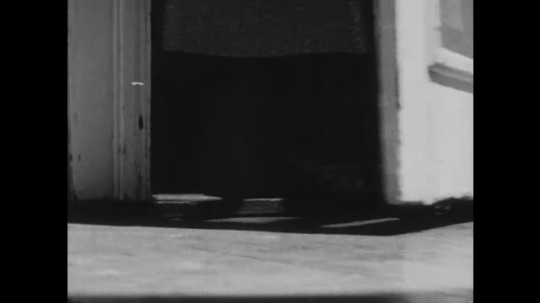 1950s: UNITED STATES: back door opens. View of feet in door. Dog pants by cage wire.